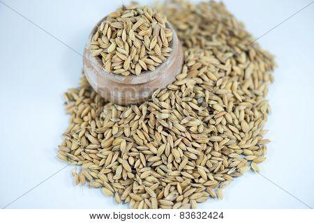 Rice Isolated On White Background