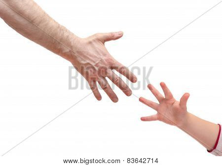 man's hand and   hand baby isolated on white background. Various gestures and movements.