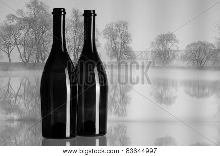 Two Bottles And Autumn Landscape In The Mist