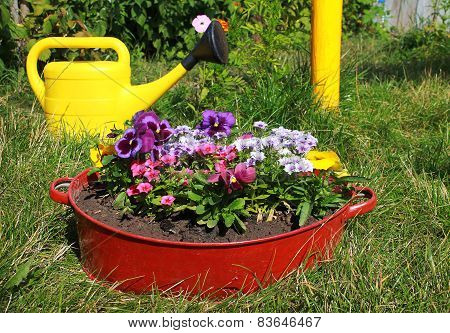 Ideas For Garden - Flowers In Old Wash-basin
