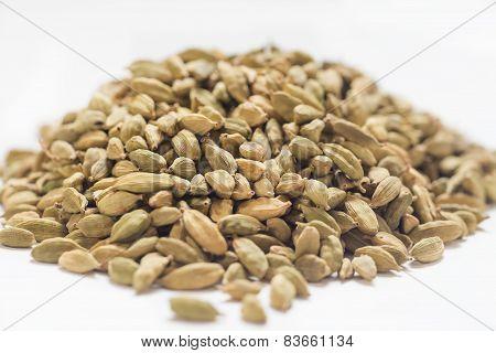 Cardamon beans