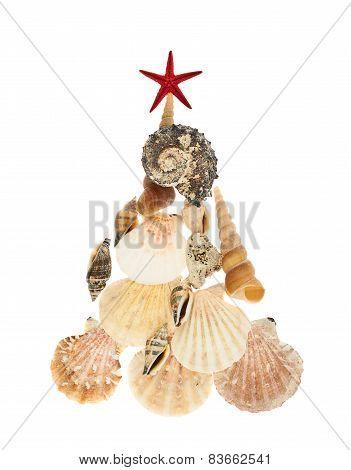 Christmas tree made of seashells