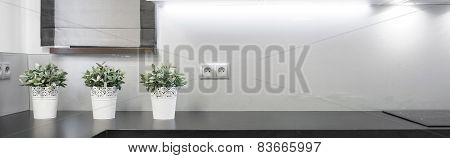 Flowerpots On The Wooden Worktop
