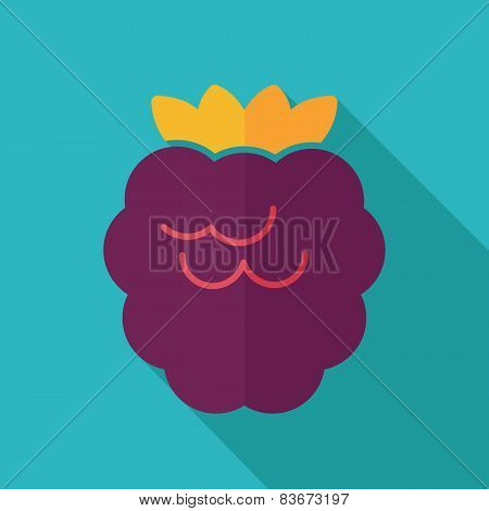 Raspberry Flat Icon With Long Shadow
