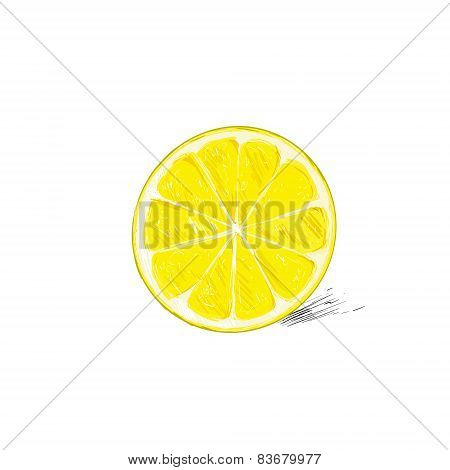 lemon half cut circle citrus fruit color sketch draw isolated over white background