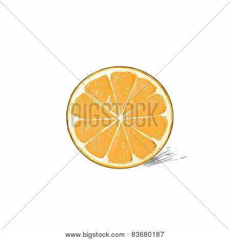 orange half cut circle citrus fruit color sketch draw isolated over white background