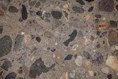 picture of terrazzo  - polished concrete - JPG