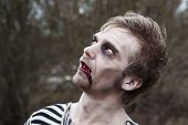 pic of insane  - Portrait of bleeding man with zombie makeup - JPG