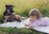 pic of puppy dog face  - Child girl with puppy dog relaxing on blanket in grass at nature meadow - JPG