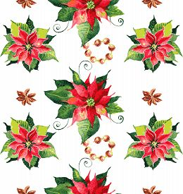 picture of poinsettia  - Christmas background with red poinsettia - JPG