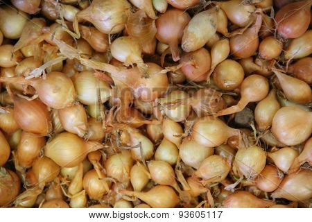 Small onions