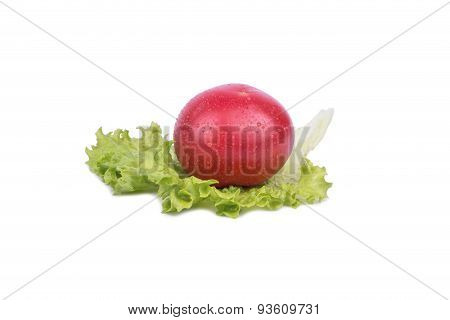 Lettuce Leaves And Tomato