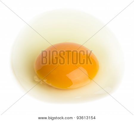 Raw Egg With A Whole Yolk