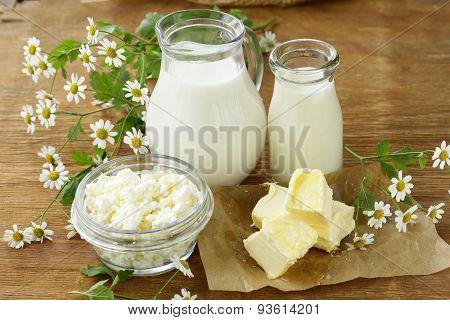 assortment of dairy products (milk, butter, sour cream, yogurt) rustic still life