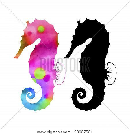 Sea horse set vector
