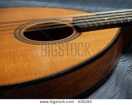 Flat-Top Mandolin Detail