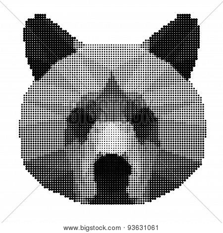 Abstract Monochrome Bear Portrait Of Circles Isolated On White Background