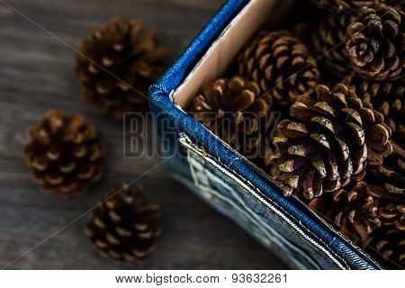 Pine Cones In Denim Box