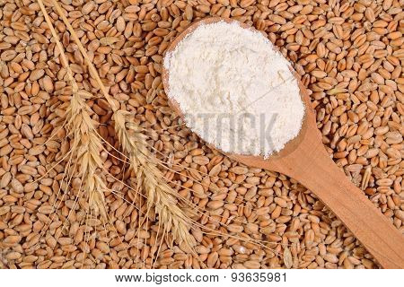 White Flour In A Wooden Spoon And Ears Of Wheat On A Wheat Grains