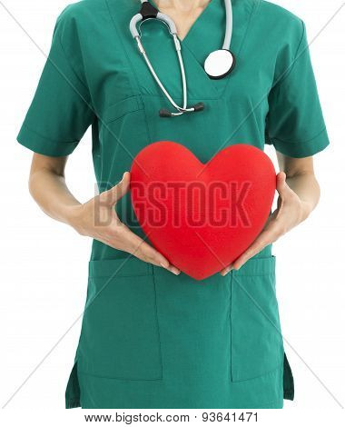 Surgeon Holding A Heart