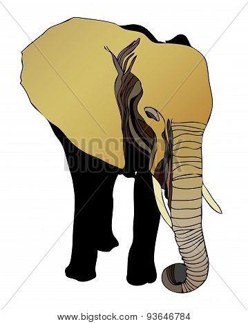 Elephant (elephantidae)