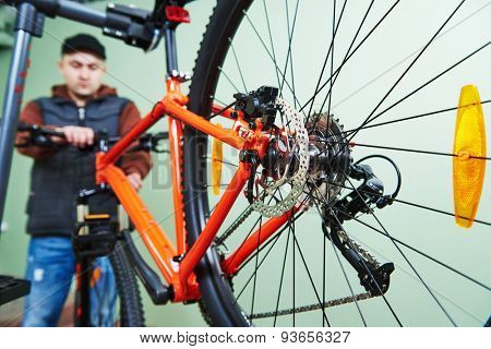 Bike maintenance: mechanic serviceman repairman installing assembling or adjusting bicycle gear on wheel in workshop