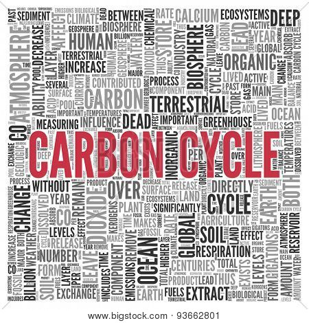 Close up CARBON CYCLE Text at the Center of Word Tag Cloud on White Background.