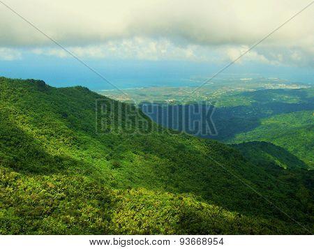 El Yungue National Forest