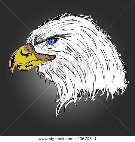 Colored Eagle