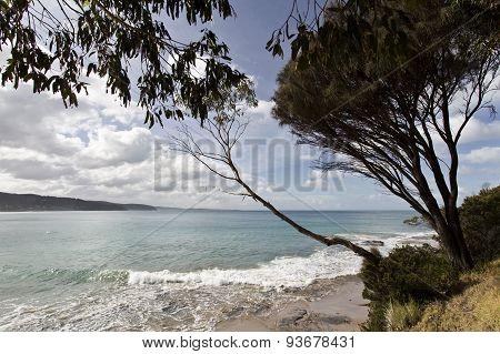 Surf Beach Of The Great Ocean Road