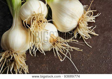 Fresh garlic from grown in kitchen garden