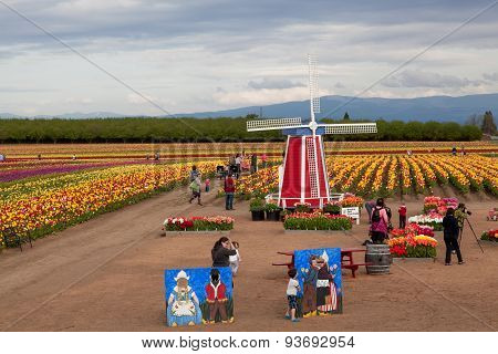 Tulip Farm Family Fun