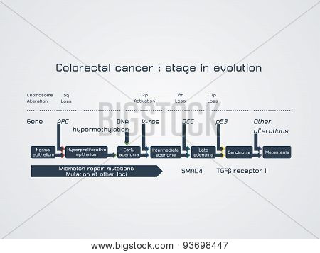 Colorectal cancer - stage in evolution