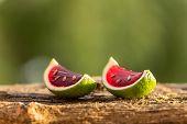 foto of jello  - Red jello in lime peels looks like a watermelon - JPG