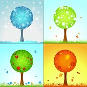 picture of summer insects  - Winter Spring Summer and Autumn - JPG