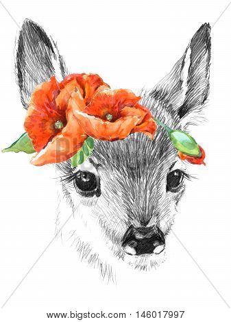 Cute deer. pencil sketch of fawn. Animal illustration. T-shirt design.