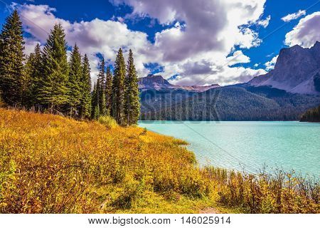 The concept of eco-tourism. Yoho National Park in Canada. Sunny day in autumn. Mountain Emerald lake in the wooded mountains