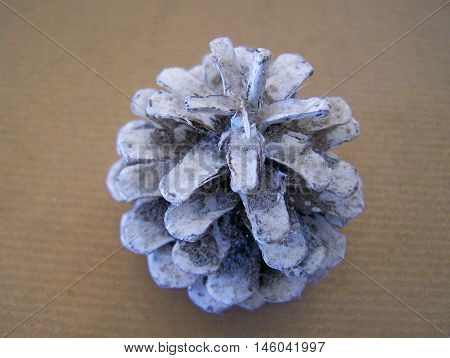 Silver pinecone decoration - used on Christmas