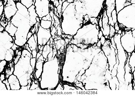 Marble Texture Invert Color Black And White Color Create From Real Marble Stone For Design Or Decora