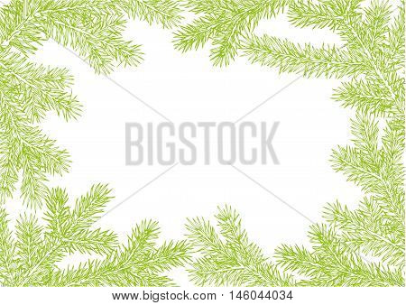 background made of fir branches. Green lush branch of spruce with the two sides.
