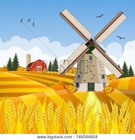 Cartoon beautiful fall farm scene with wheat fields. Farm flat landscape. Organic food concept for any design