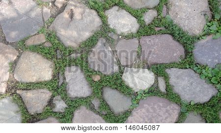Paving the old masonry with sprouted grass background