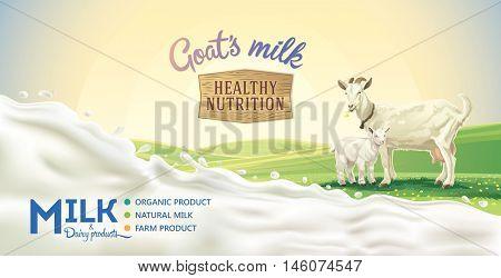 Rural landscape with goat and kid, splash of milk as a design element.
