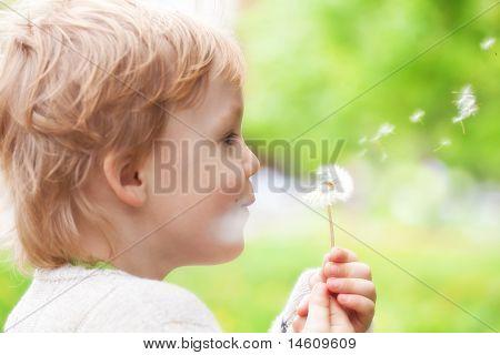 junge blond Kind in der Wiese weht wünscht auf Löwenzahn seed