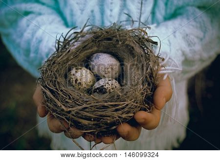 Child holding a nest with eggs. Background for Easter greeting card.