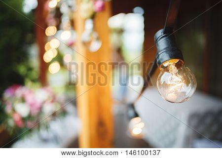 Edison's light bulbs on the light background. Wedding decoration