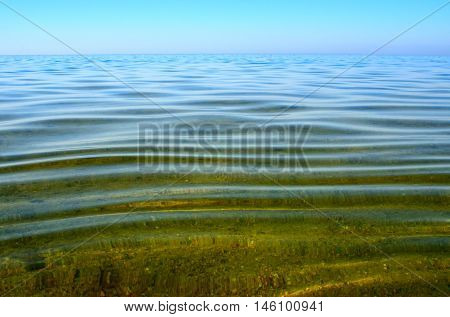 Seabed Is Seen Through A Clean And Clear Water. Small Waves On The Sea Surface In Summer.