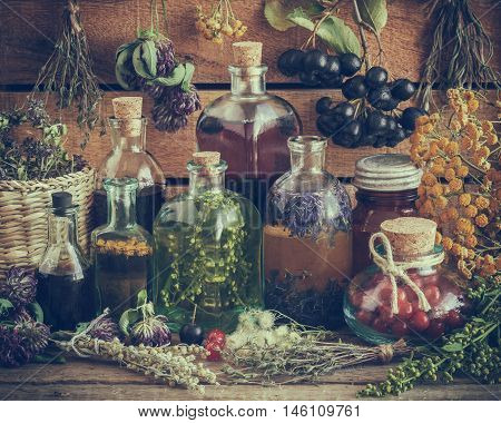Bottles Of Tincture, Potion, Oil, Healthy Berries And Healing Herbs. Retro Toned. Herbal Medicine.