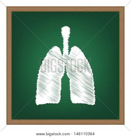 Human Organs Lungs Sign. White Chalk Effect On Green School Board.