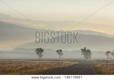 Foggy landscape in Grand Tetons national park